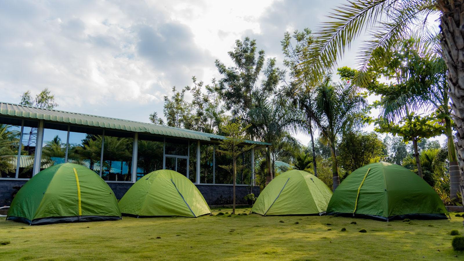 lago-palms-tent2
